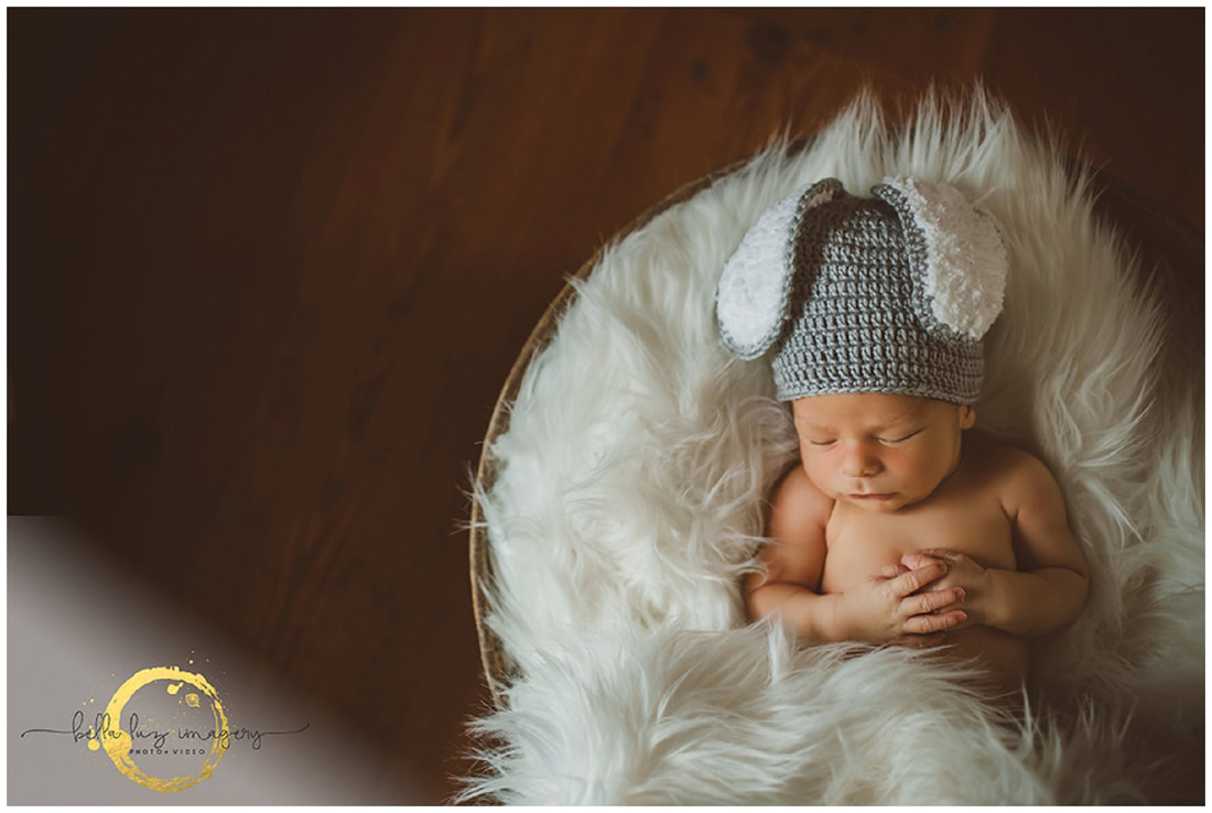 newborn photographers in massachusetts